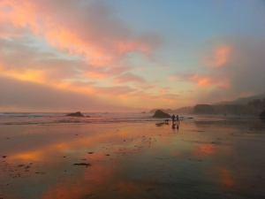 Seaside Beach with the Australian Shepards