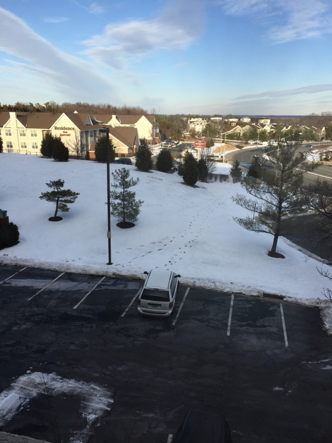 View from my hotel room in Manassas, VA
